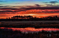 Marsh Sunrise: copyright Michael Land Photography