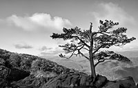 Blue Ridge Overlook: copyright Michael Land Photography