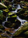 Cascade: copyright Michael Land Photography