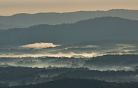 Fog in the Valley: copyright Michael Land Photography