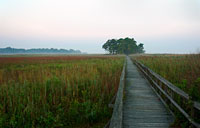 Marsh Walk: copyright Michael Land Photography