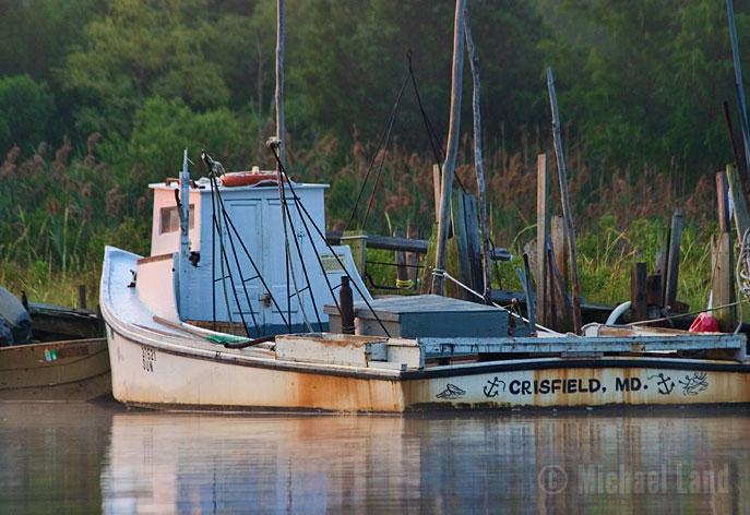 Crisfield Crabber