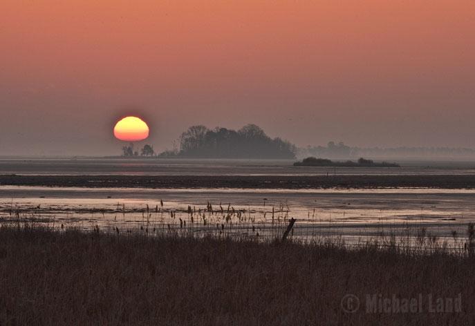 Blackwater Sunrise
