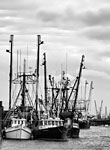 Trawlers: copyright Michael Land Photography