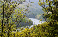Switzer's Dam: copyright Michael Land Photography