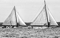 Skipjack Races II: copyright Michael Land Photography