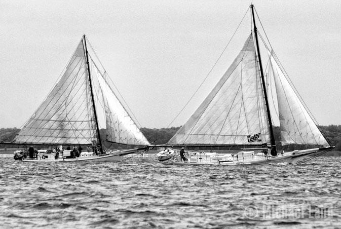 Skipjack Races II