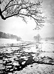Winter Solitude: copyright Michael Land Photography
