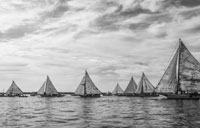 Deal Island Skipjacks: copyright Michael Land Photography