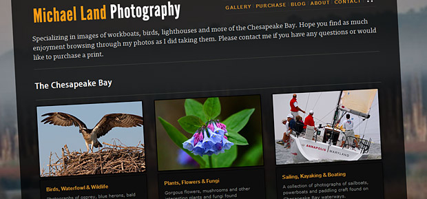 Michael Land Photography website